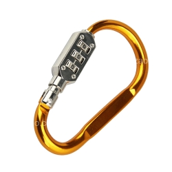 Carabiner Combination Lock (7.5 cm)