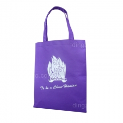80g Eco-friendly Bag (30 x 38cm)