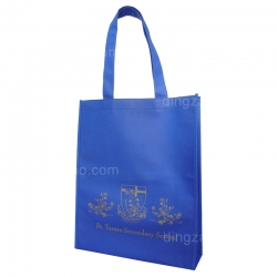 80g Eco-friendly Bag (30 x 36 x 9 cm)